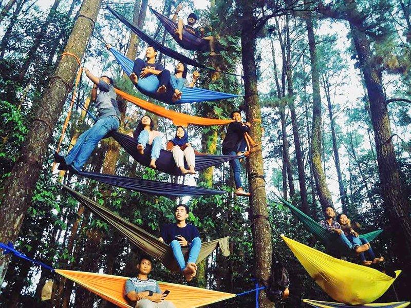 Hutan Pinus Mentaos di Banjarbaru